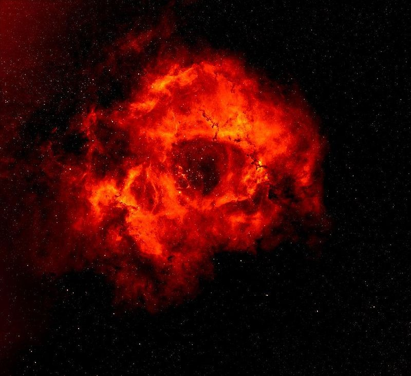Getting to the Heart of the Rosette Nebula: How It Got Its Rose Shape