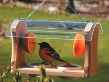 Backyard Nature Products Second Nature Oriole Feeder