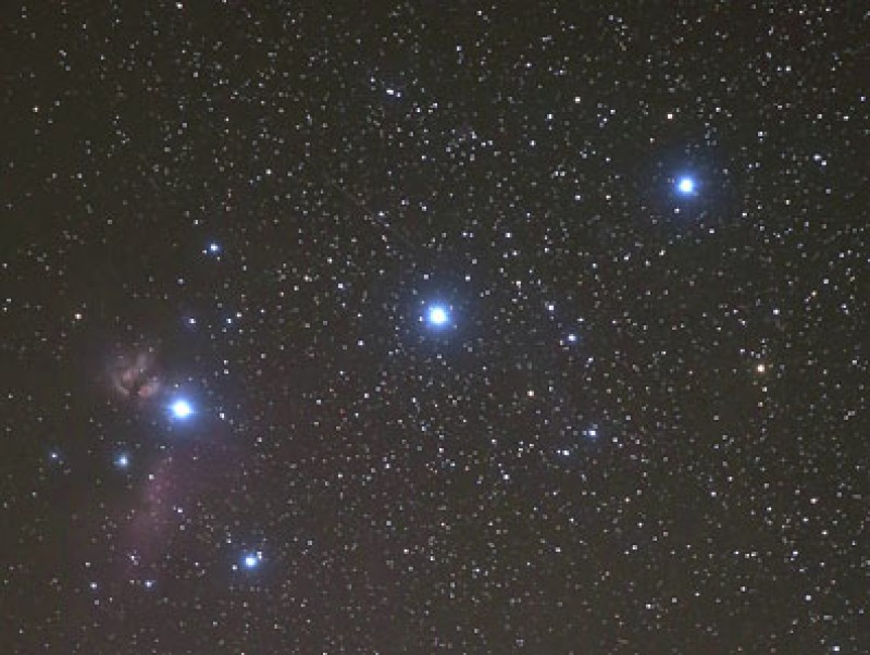 A Winter Night's Sojourn in Orion's Belt