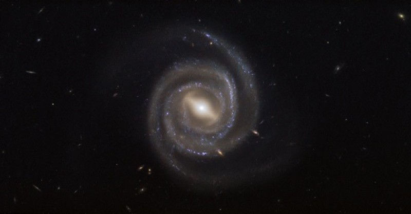 How galaxies and their supermassive black holes grow together