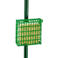Droll Yankees Suet Bird Feeder w/Pole Clamp