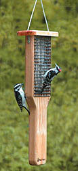 Backyard Nature Products Wood Country Double Cake Pileated Suet Feeder