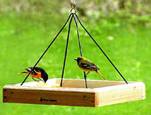 Backyard Nature Products Wood Country Medium Hanging Platform Feeder