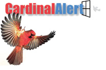 Window Alert Cardinal Alert for Territorial Birds