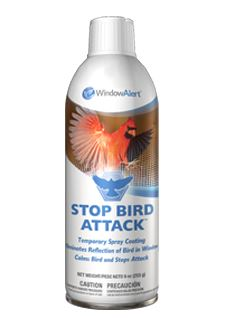 Window Alert Stop Bird Attack