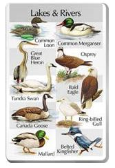 The SongBird IdentiFlyer Lakes & Rivers Songcard