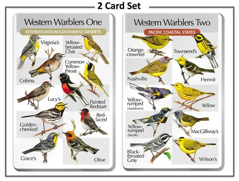 The SongBird IdentiFlyer Western Warblers One & Two - 2 SongCard Set